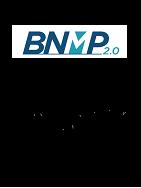 Imagem - BNMP 2.0